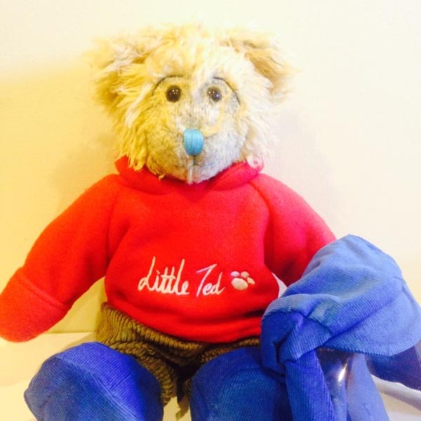 Pale brown teddy bear with red jumper which reads