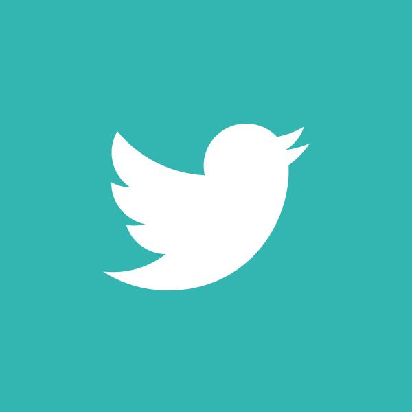 Twitter logo of white bird on teal background.